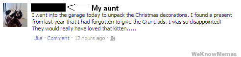 they would have really loved that kitten troll aunt